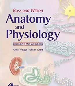 Anatomy and Phsiology